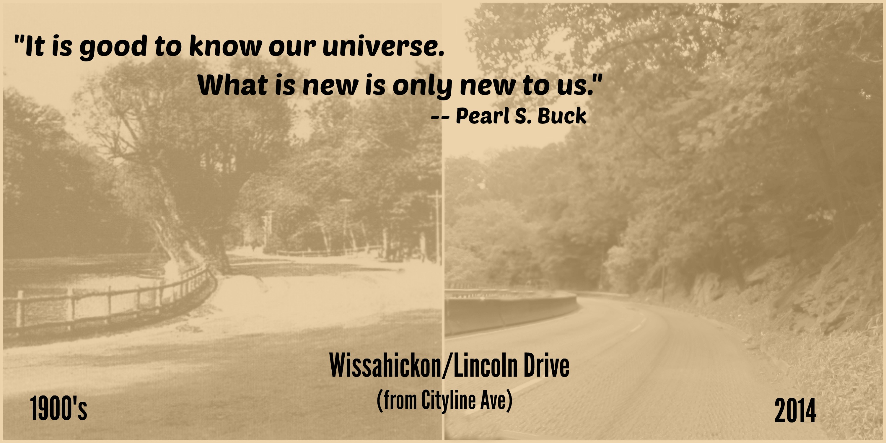 curve of Lincoln drive very similar b a pearl s buck text