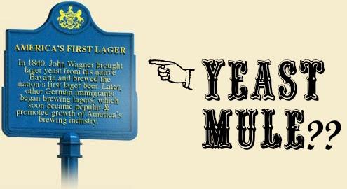 john wagner plaque yeast mule